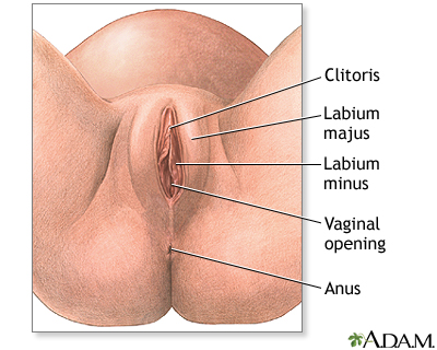All about vaginal cancer